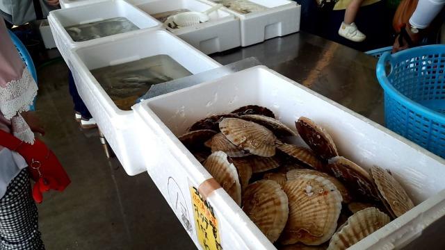 片瀬漁港の鮮魚直売所で販売されている新鮮魚