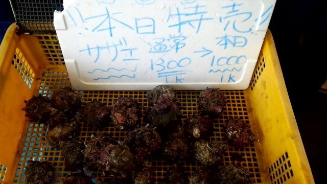 片瀬漁港の鮮魚直売所で販売されている「サザエ」